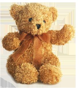 image_teddy